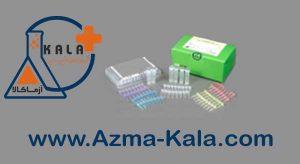 HBV-kit-Bioneer