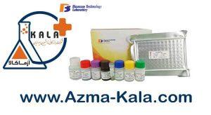 Human-Tumor-Necrosis-Factor-Alpha-ELISA-Kit-BT-Lab
