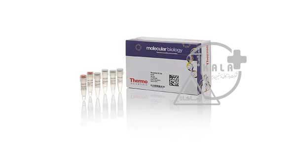 کیت سنتز cDNA- شرکت Thermo Scientific